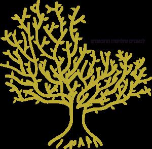 לוגו עץ המשאלות